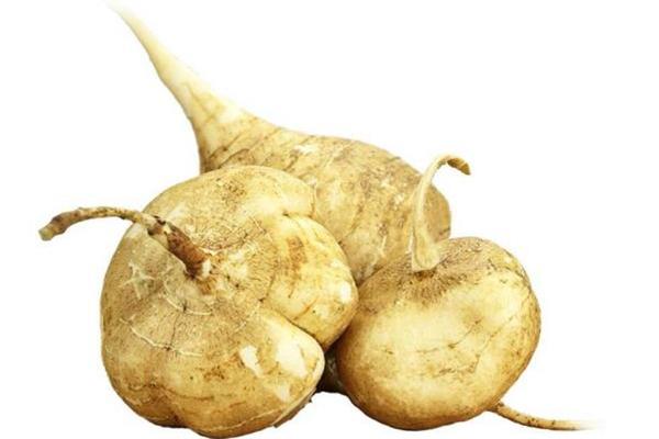 吃凉薯会肚子疼吗 为什么吃凉薯肚子疼