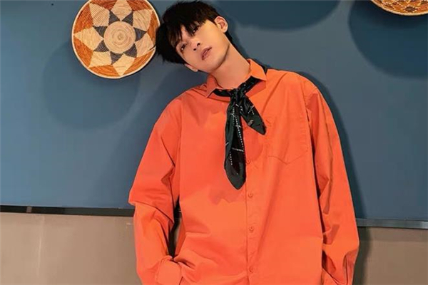 休闲衬衫什么颜色好看 休闲衬衫流行什么颜色