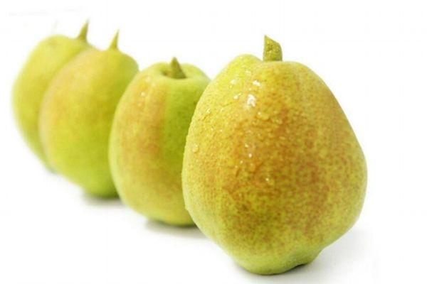 香梨在几月份成熟能收获 香梨的营养价值