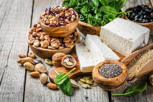 什么是植物蛋白 植物蛋白和动物蛋白的区别