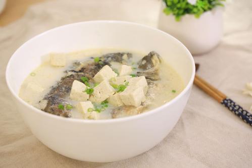 鲫鱼豆腐汤能补钙吗 鲫鱼牛奶汤怎么做好吃
