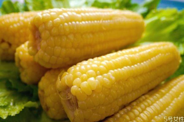 煮玉米要煮多久 煮玉米要煮什么样的玉米好吃
