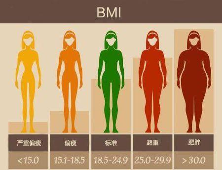 腰臀比过高有什么危害 腰围的相关数值