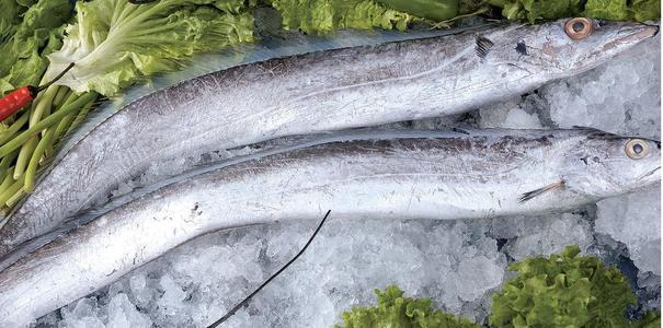 超市买的带鱼需要处理吗 红烧带鱼怎么做好吃