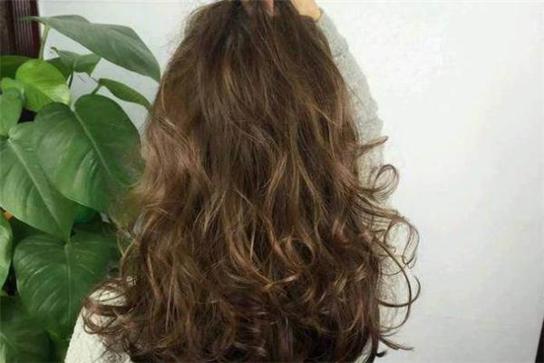 橄榄棕发色容易掉色吗 橄榄棕在阳光下是什么颜色