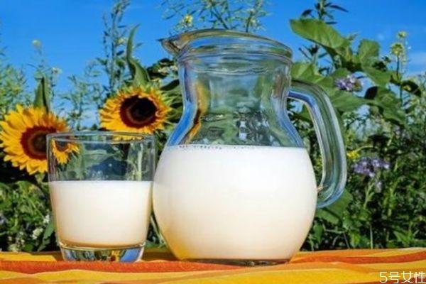 空腹可以喝牛奶吗 喝牛奶要注意