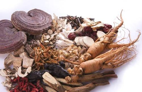 草药属于中药吗 常见的名贵中药材有哪些