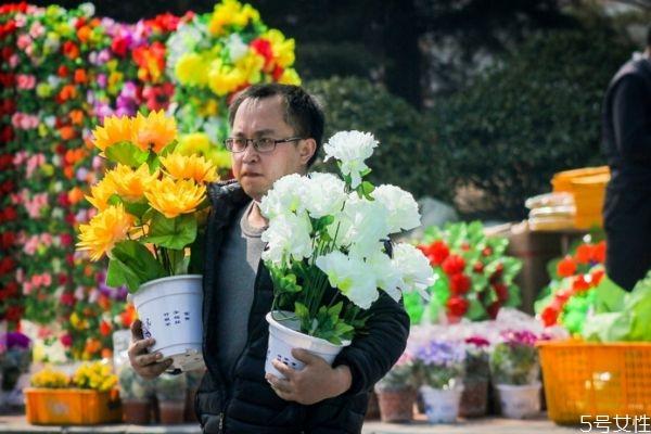 清明节的鲜花要用几朵 清明节扫墓应该用什么花