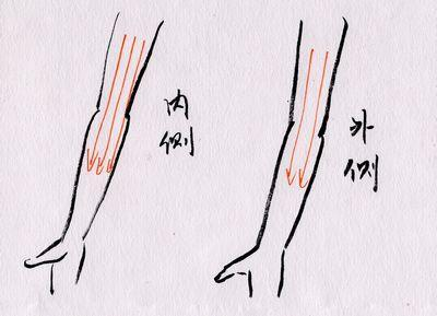 手臂刮痧可以减肥吗 手臂刮痧的类型