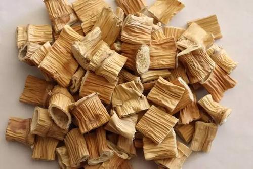 芦根是什么 芦根的作用