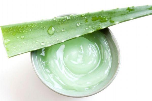 芦荟胶可以去黑眼圈吗 芦荟胶有淡化黑眼圈的作用吗