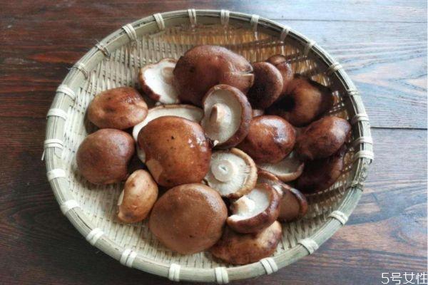 香菇应该怎么清洗 清洗香菇的方法