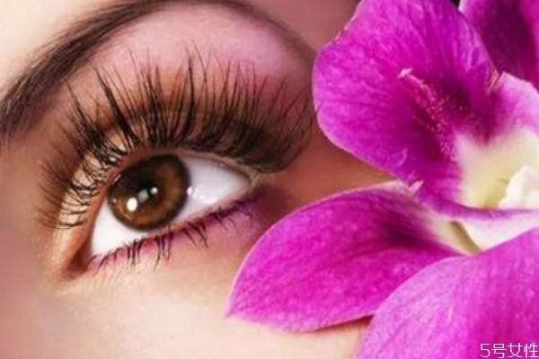 种完睫毛多久可以碰水 种完睫毛后有什么注意