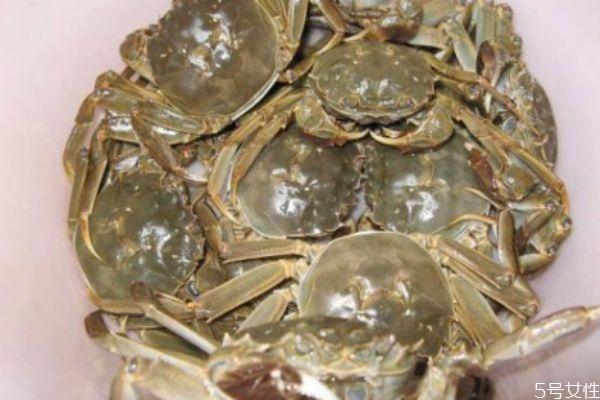 螃蟹应该怎么清洗 怎么清洗螃蟹好