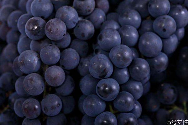 吃葡萄有什么好处减肥图片