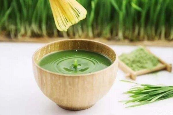 大麦青汁可以减肥吗 大麦青汁有减肥的功效吗