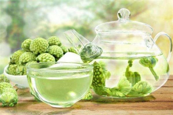 绿萝花茶是什么味道 绿萝花茶苦吗