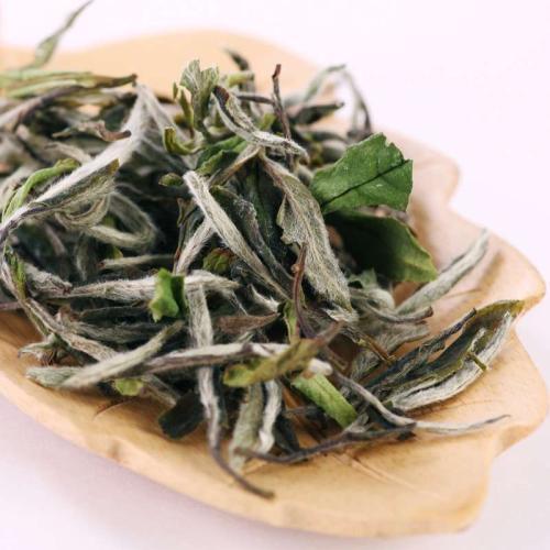 白牡丹茶的药用价值 喝白牡丹茶的禁忌