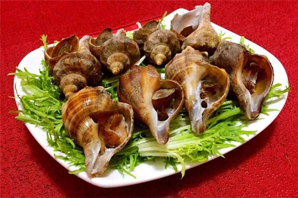 海螺没煮熟能吃吗 海螺的头部能吃吗