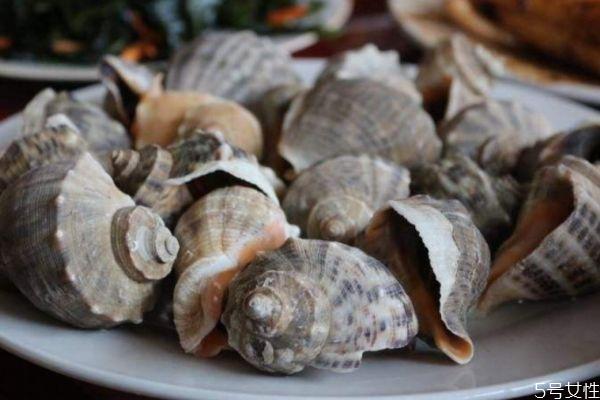 海螺要煮多久才会熟 一般海螺煮多久会熟