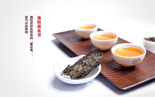 安化茶属于什么茶 安化黑茶什么味道