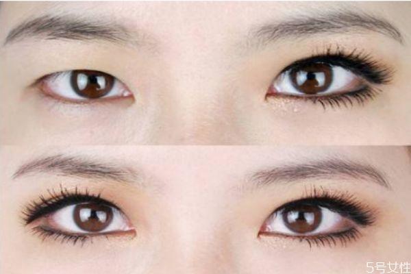 贴假睫毛和不贴的对比 种睫毛和贴假睫毛哪个好