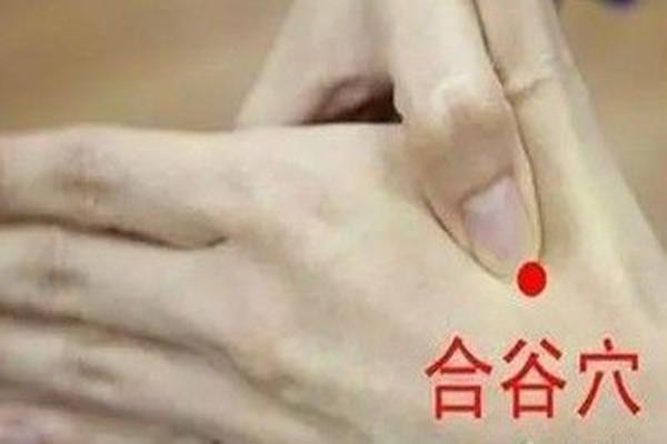 合谷穴能针灸吗 合谷穴针灸的作用