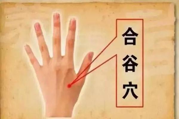合谷穴的日常保健作用 合谷穴针灸有什么感觉