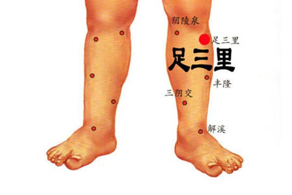 足三里的针灸作用 足三里可以经常做针灸吗