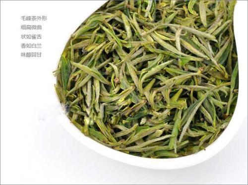 毛峰属于什么类型茶图片