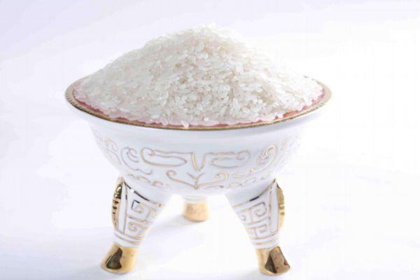 大米和糯米有什么区别 大米和糯米有什么不同