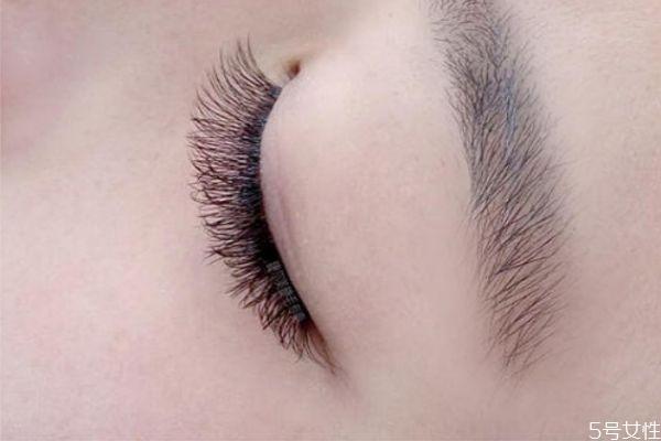 嫁接睫毛后如何洗脸 嫁接睫毛过早掉落的原因