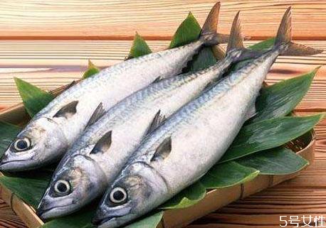 胆固醇高可以吃马鲛鱼吗 马鲛鱼的食用禁忌