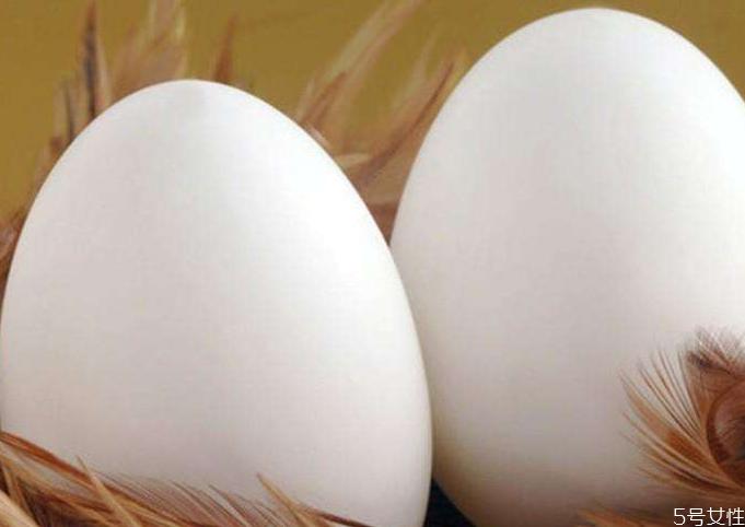 鹅蛋为什么有大有小 鹅蛋选大的好还是小的好