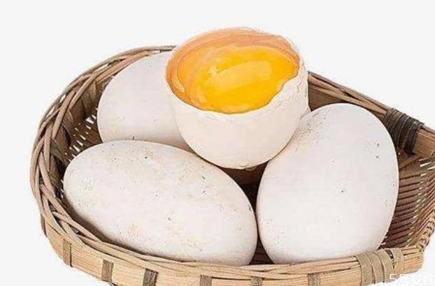 男孩发育吃鹅蛋好吗? 女人吃鹅蛋好还是鸡蛋好