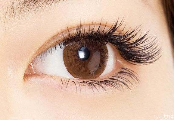 如何区分嫁接睫毛的卷翘程度 嫁接睫毛的种类
