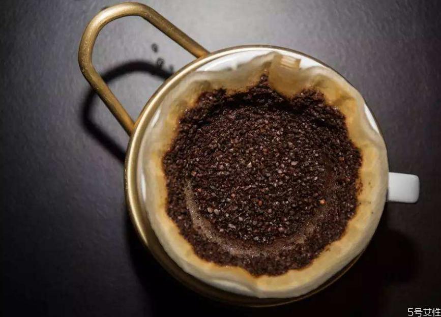咖啡渣养花怎么用图片