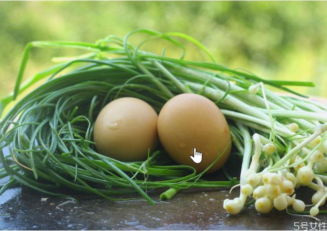 野葱什么时候可以挖 野葱怎么做好吃