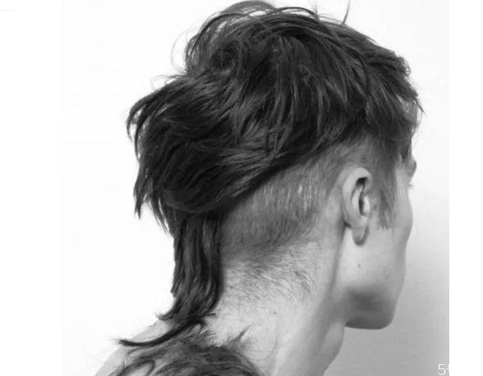 鲻鱼头是什么发型 鲻鱼头发型怎么留