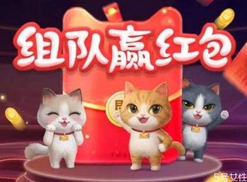2020双十一养猫怎么退队 淘宝双十一组队玩法