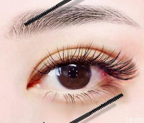 睫毛打底可以单独使用吗 睫毛打底膏的正确用法