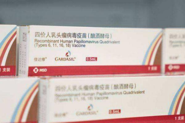 接种hpv多久可以同房 打完宫颈癌疫苗后需要注意什么