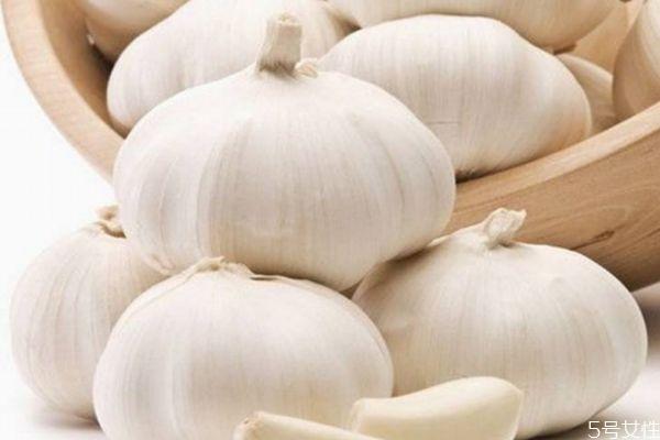 大蒜怎么种 怎样种蒜的正确过程