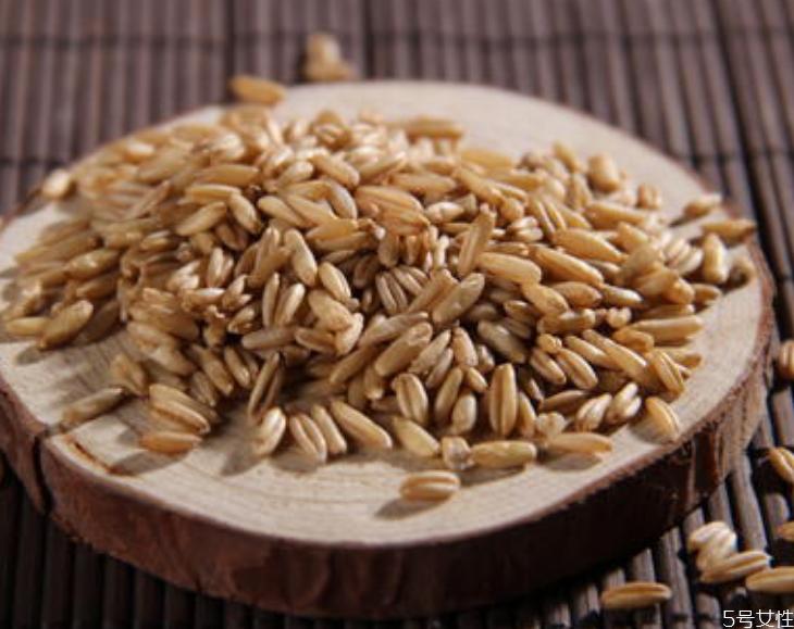 燕麦米怎么吃 燕麦米和燕麦片哪个好