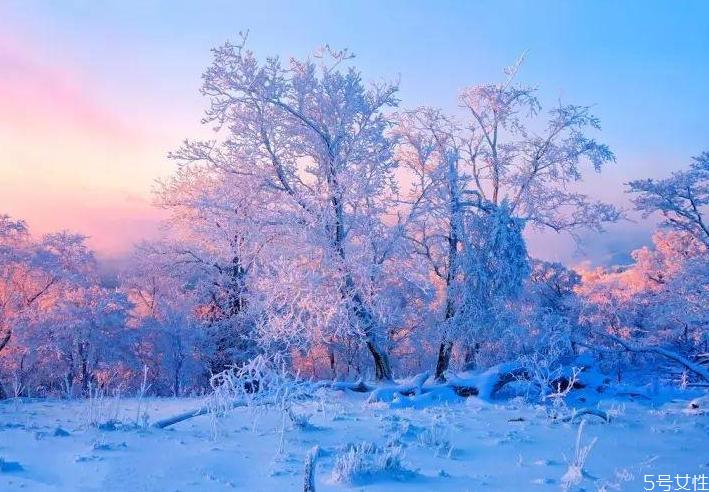 元旦去哪裡看雪比較好 中國看雪的十大地方