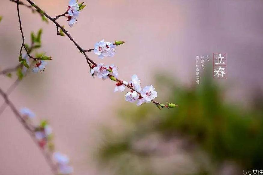 立春节气吃什么传统食物 立春的风俗及饮食