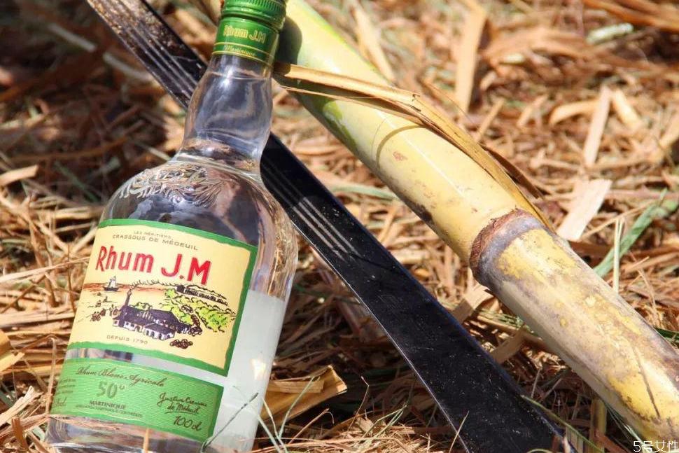 朗姆酒为什么叫朗姆 朗姆酒的历史由来