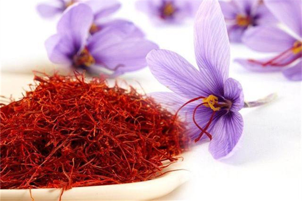 藏红花可以调月经吗 藏红花对女人有什么好处