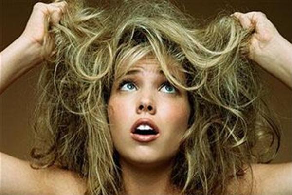 头发干燥用什么改善 头发干燥用什么洗发水好