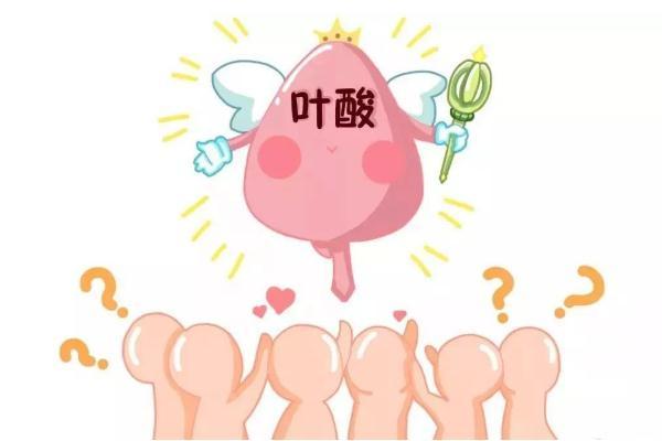 叶酸对身体有什么好处 叶酸对备孕有什么帮助